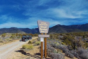 Spring-Mountain-National-Recreation-Area